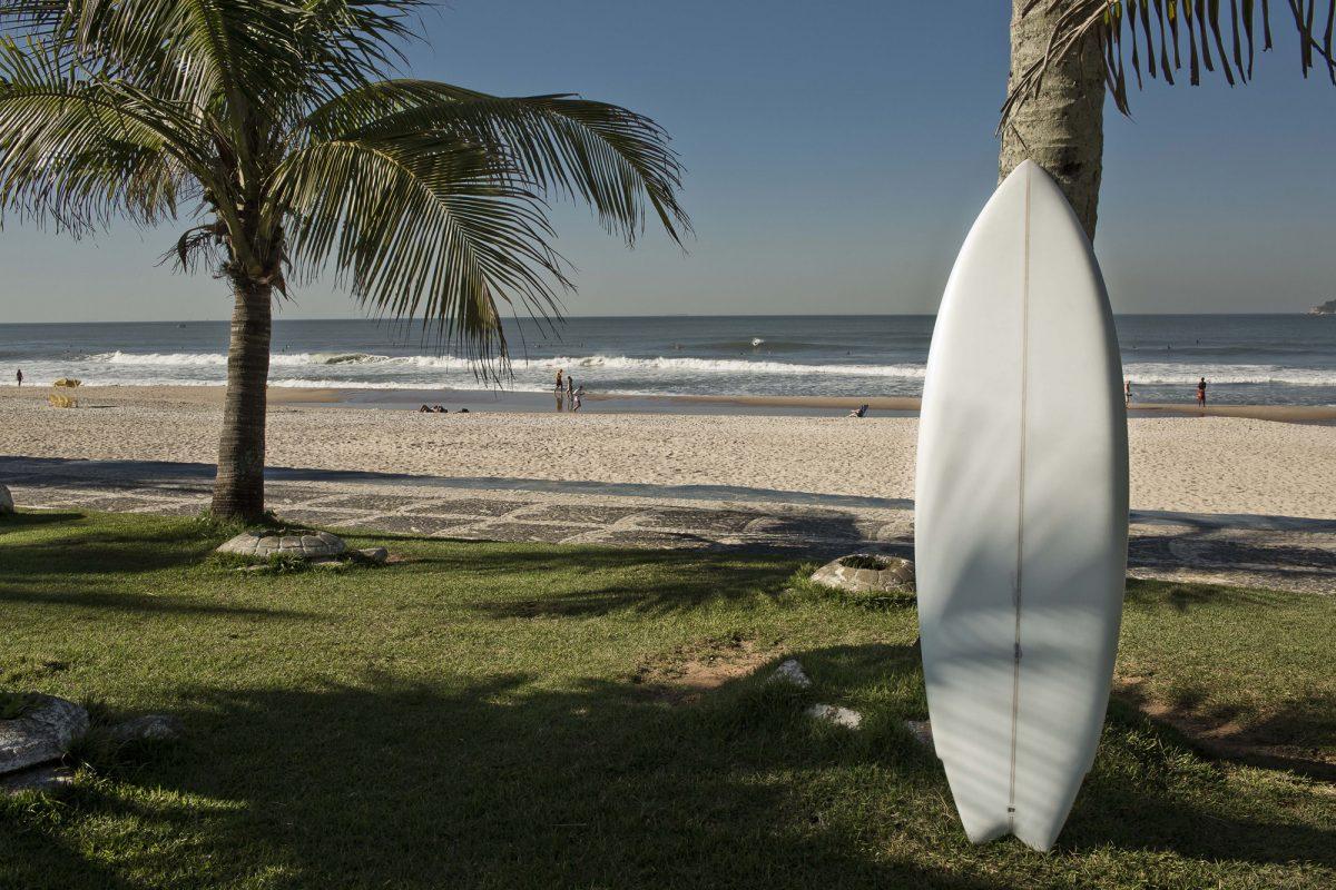prancha de surf encostada no coqueiro em gramado da praia